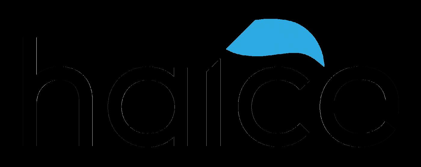 Logo Haice